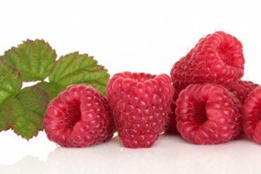 Raspberry-Ketone000 (1)