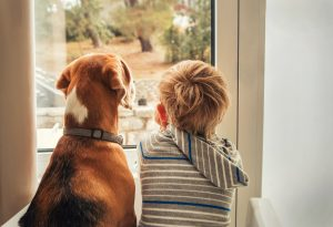 young boy and his dog best friend looking out window