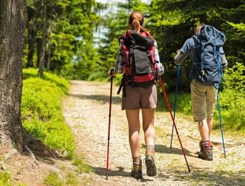 trekking with walking sticks