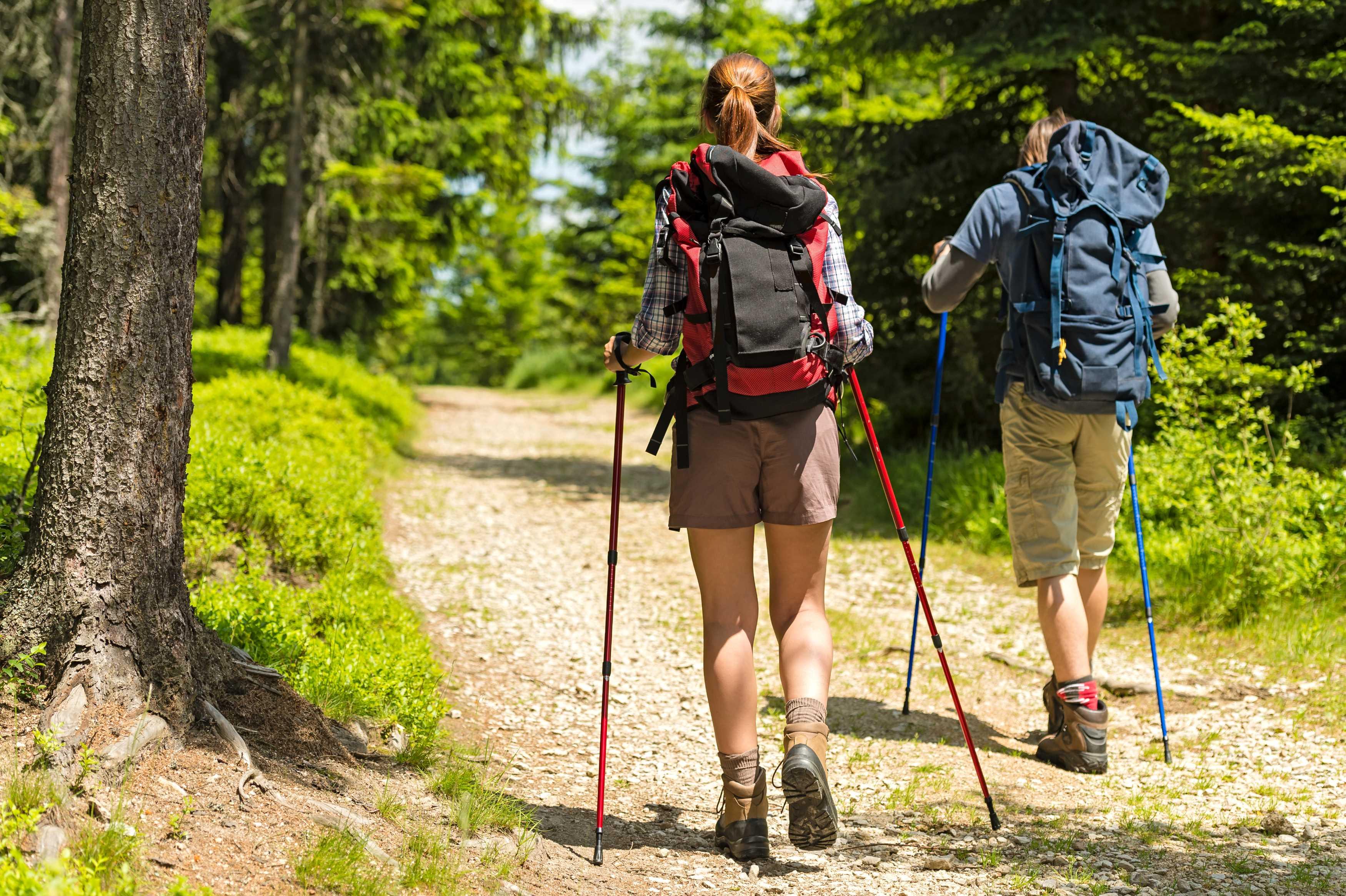 trekking with walking sticks