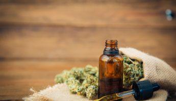 CBD oil and hemp